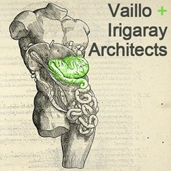 Vaillo + Irigaray Architects