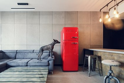 FAB30RR1   Refrigerator