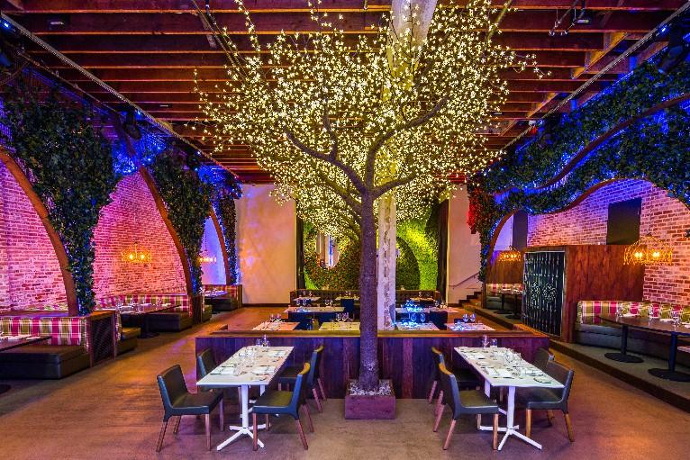 New Organic Cafe Gaslamp