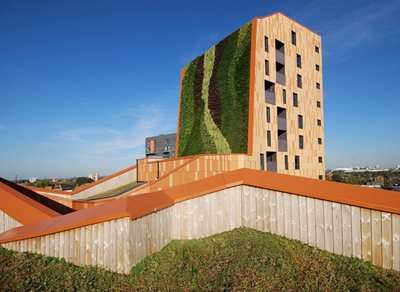 Landscape essential for healthier cities