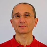Domenico Zauli