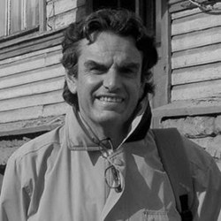 Luca Zevi