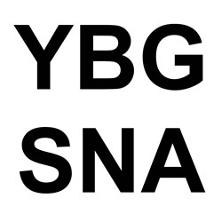 YBGSNA