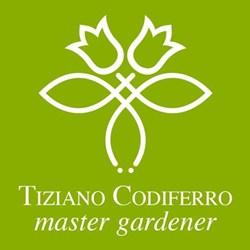 Tiziano Codiferro
