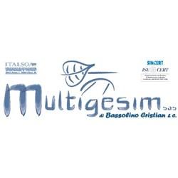 Multigesim SAS di Bassolino Cristian & Co.