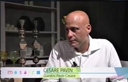 Cesare Pavin