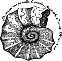 Claudio Salvatore Niglio