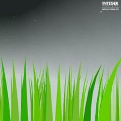 INTEGER - Intelligent & Green