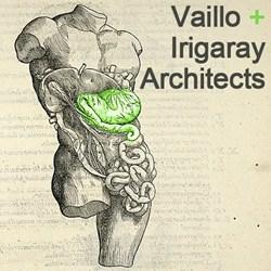 Vaillo + Irigaray Architects