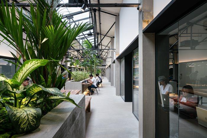 Jungle Station