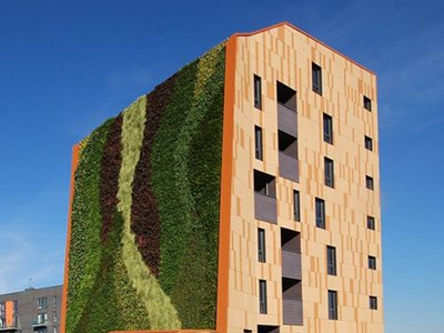 Thinking of Getting a Vertical Garden? Better Read This First...